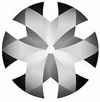 CONAEMI_300_edited.png