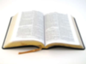 thebiblebook.jpg