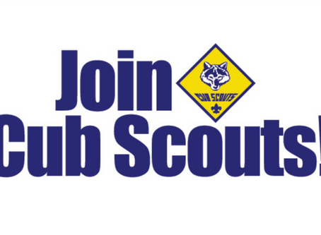 Calling all Scout Parents!