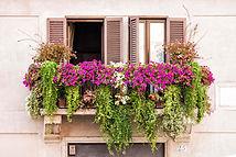 italian-balcony-windows-full-plants-flow