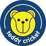 Teddy Cricket logo 2019.jpg