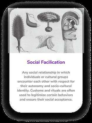 Social Facilication.png