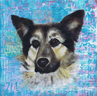 dog portrait, pet portrait, dog