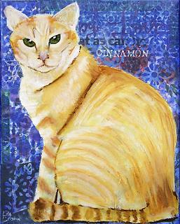 cat, cat portrait, pet portrait