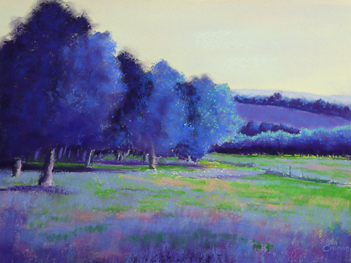 Evening Shadows pastel painting