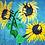 A Sunflower's Dream original painting