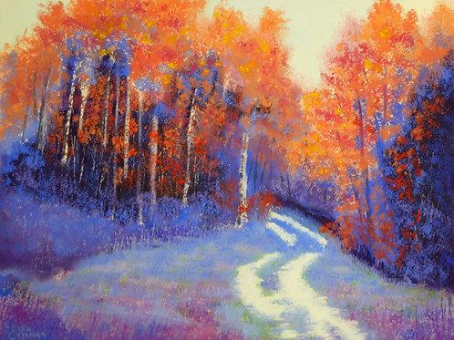 Where the Path Leads canvas print