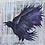 Midnight Lore original painting The Raven