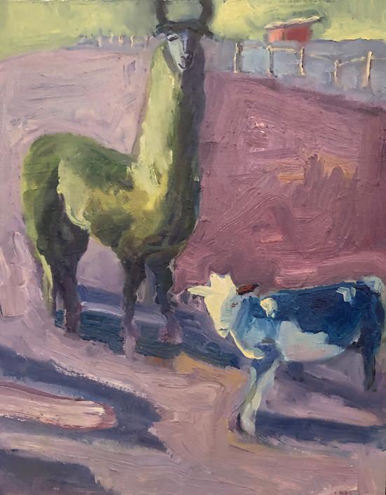llama and calf
