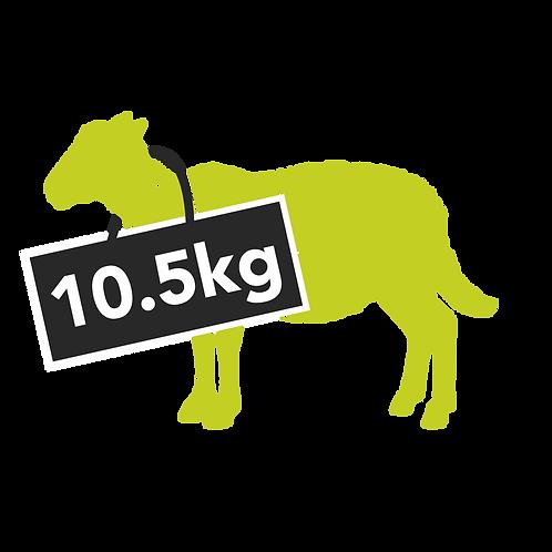 hogget half - 10.5kg