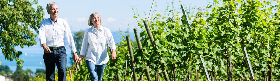 Happy couple vineyard