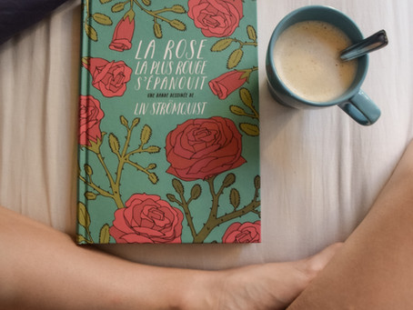 La rose la plus rouge s'épanouit, Liv Strömquist