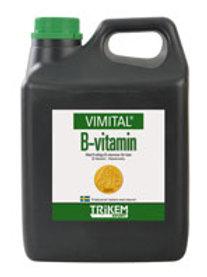 B- Vitamin 1L