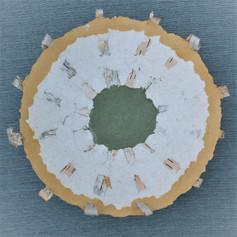 Paper Birch Bowl