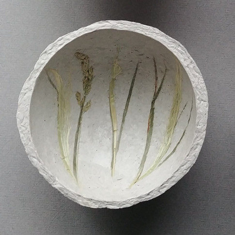 Tan Grass 2