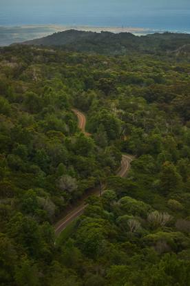Waimea Canyon Road