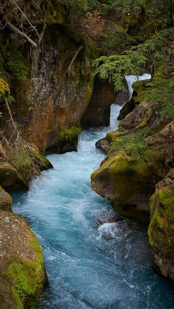 Avalanche Creek
