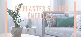 Les Plantes & leurs énergies