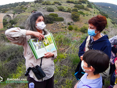 Jornada de identificación de orquídeas en La Carolina (Jaén)