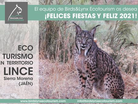 ¡El equipo de Birds&Lynx Ecotourism os desea felices fiestas y feliz 2021!