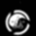 holism-logo-150.png