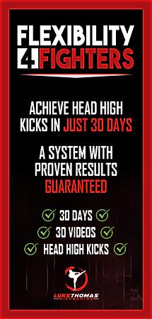 Martial Arts Online AD 1.png