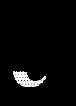 myname for animate-08