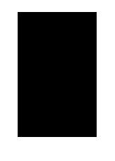 myname for animate-07