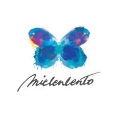 Terapiapalvelu Mielenlennon -logo