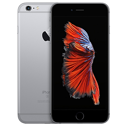 iPhone 6s Plus - Screen Replacement