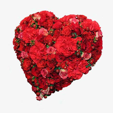 Hjerte rød