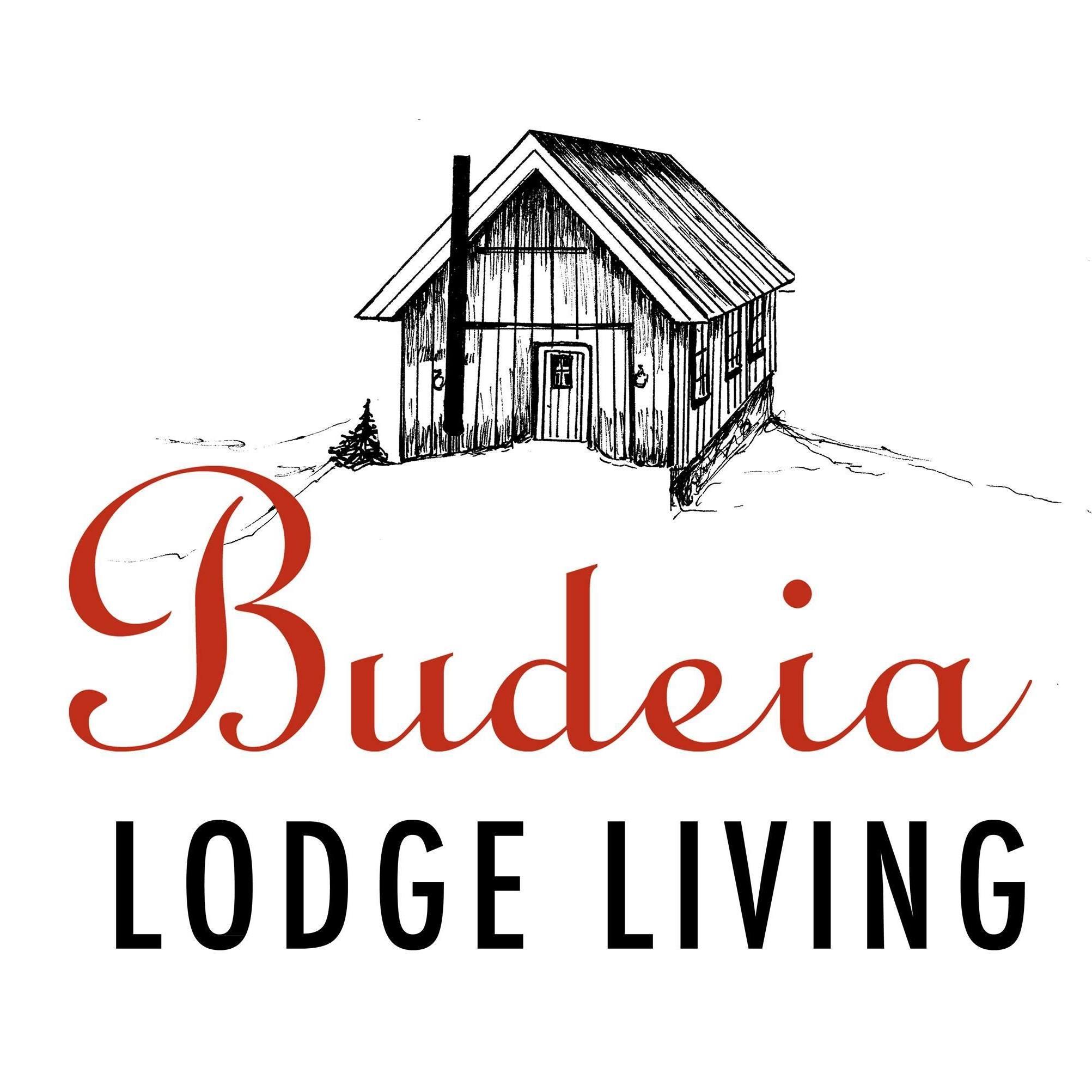 Logo til Budeia AS
