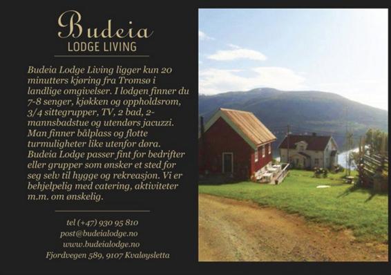 Flyers til Budeia logde living
