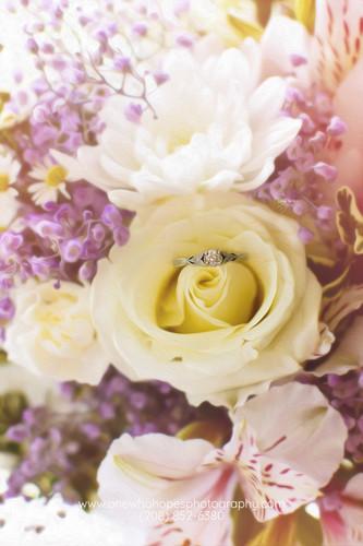 www.onewhohopesphotography.com (208) 852