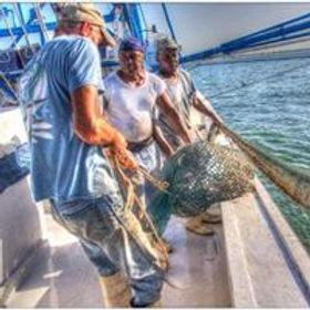 fishermen with net.jpg
