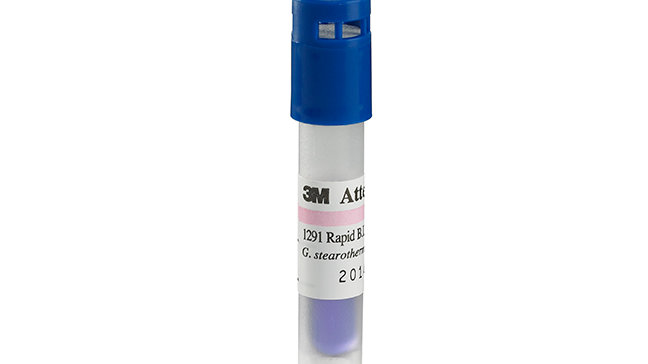 3M™ Attest™ Rapid Readout Biological Indicator 1291 for Steam Sterilization