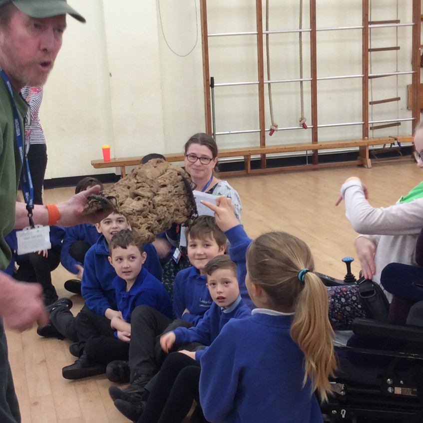 Touching the stick insects