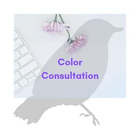 BBDSRI - Color Consultation.png