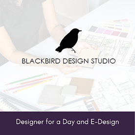 BBDSRI - One-Day Design and E-Design.png