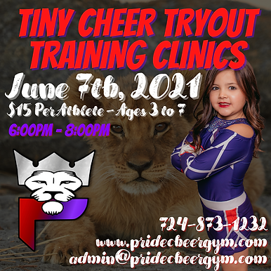TRYOUT TRAINING CLINICS  (1).png