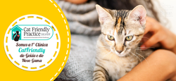 2019_09_20_Banner_site_Clínica cat frien