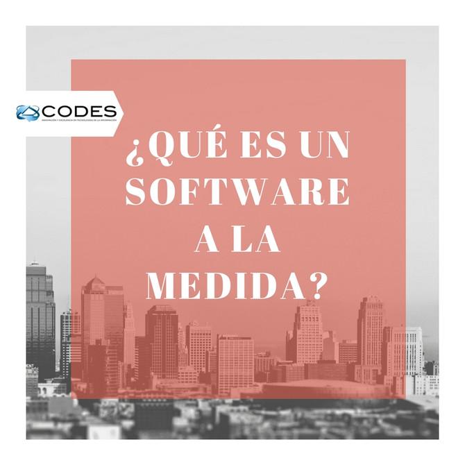 ¿Qué es un Software a la Medida?