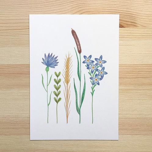 Ansichtkaart 'bloemen' van Lesja illustraties