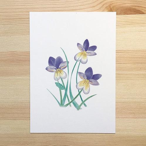 Ansichtkaart 'viooltjes' van Lesja illustraties