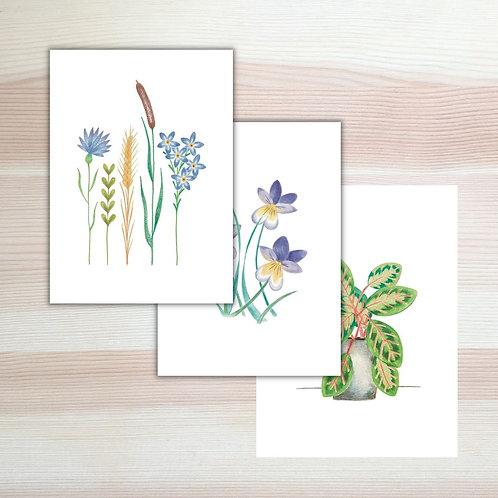 Set kaarten 'plant power' Lesja illustraties Breda