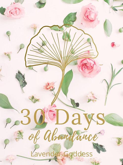 Abundance 30 Day Journal