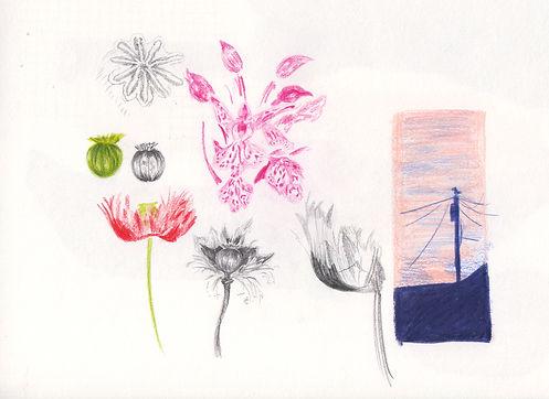 botanical .jpg