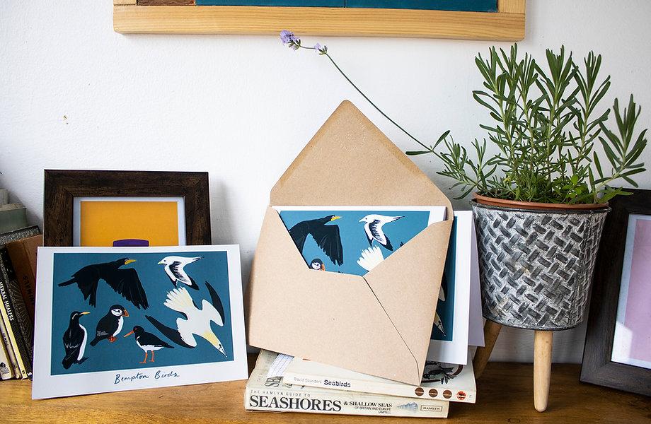 Bempton Birds