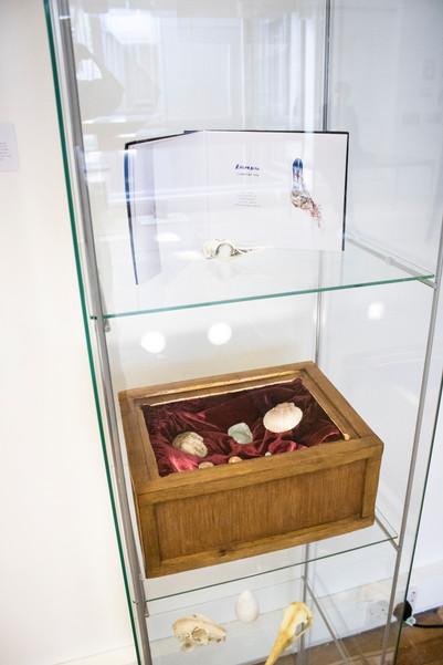 Glass Case Obituary Box