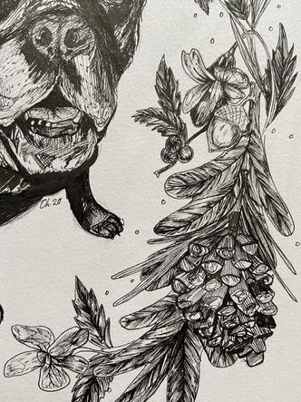 Pine Cone Detailing